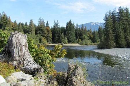 Voller Haken-Campingplatz Vancouver Insel Geschwindigkeit datieren über 50