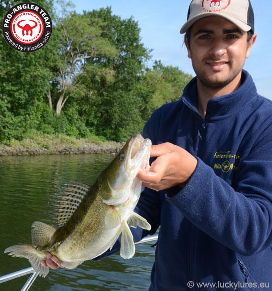 Daniel Leuchter, Nils Master Pro-Angler Deutschland, mit Zander aus einem niederländischen Kanal.