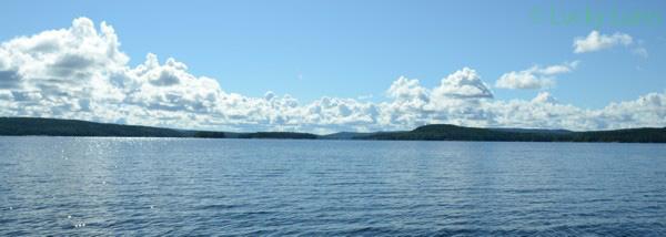 Der Glasfjorden hat eine sehr guten Bestand an Zandern und Hechten.